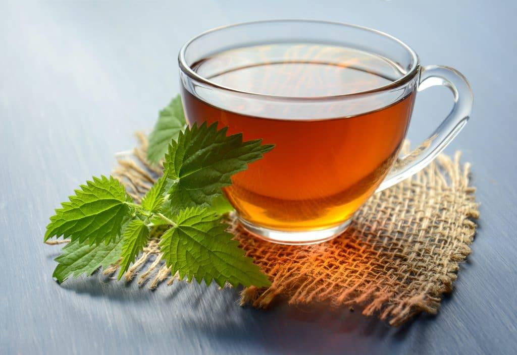 Čaj z rýmovníku zažene nachlazení i rýmu 4